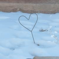 「冬季うつ」(季節性情動障害)をご存知ですか?寒い季節の鬱症状について。
