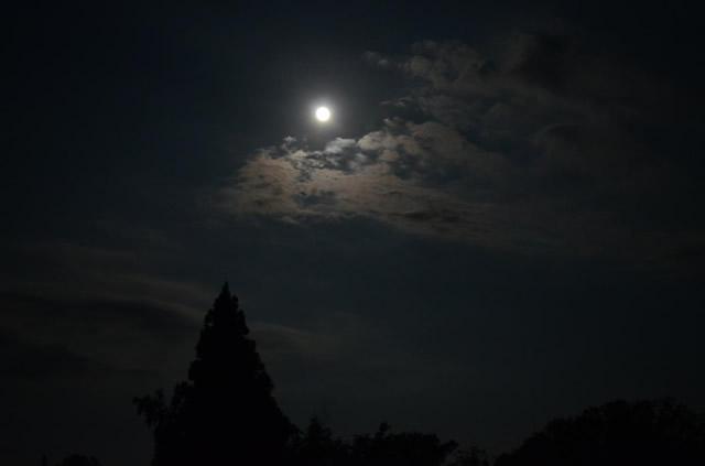 牡羊座新月,ニュームーンウォーター,新月水,満月新月カレンダー,keiko,