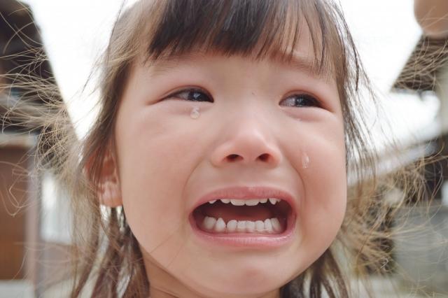 魔の二歳児,イヤイヤ期,2歳 食事,3歳 反抗期,第一次反抗期,2歳 癇癪,2歳 イヤイヤ期,2歳 反抗期
