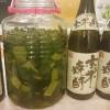 びわの葉 エキスは万能薬?ビワの葉の保存方法と作り方レシピ