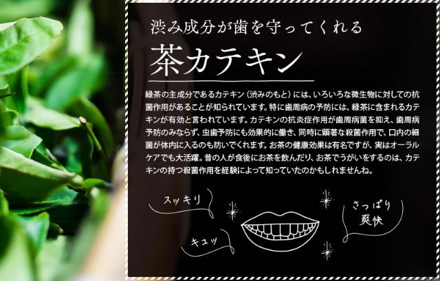 プレミアムブラントゥースの有効成分の茶カテキン
