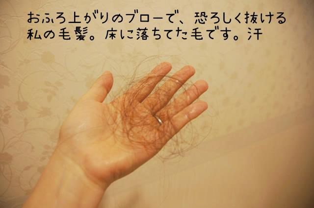 女性の薄毛にマイナチュレ,マイナチュレ 抜け毛,マイナチュレ 抜け毛 増えた