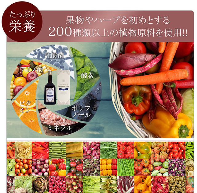 コンブッカの成分は200種類の野菜と果物