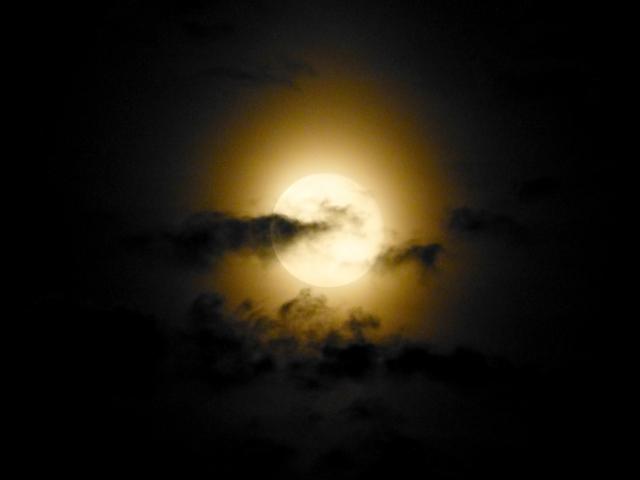 蟹座新月 2018,水瓶座満月 願い,水瓶座満月 願い事,水瓶座満月 月食,蟹座新月  意味,蟹座新月  手放し