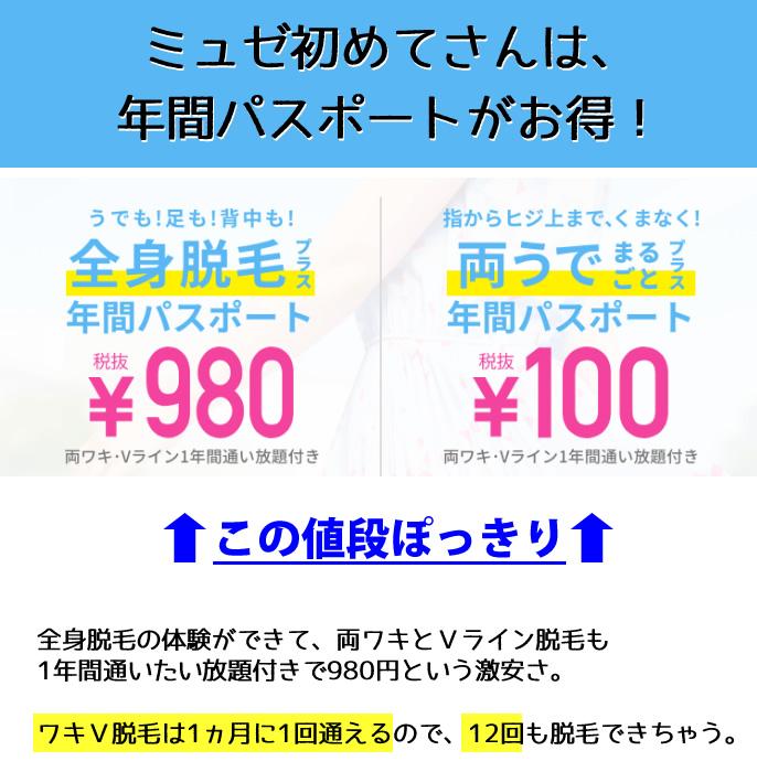 ミュゼ 980円 年間パスポート,ミュゼ 980円 本当,
