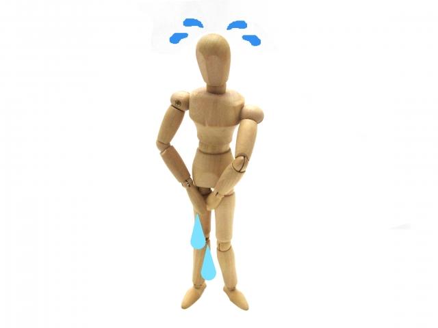 ひめトレ 効果ない,尿漏れ 40代 女性,尿漏れ 原因 女性 40代,尿漏れ 原因 女性 30代