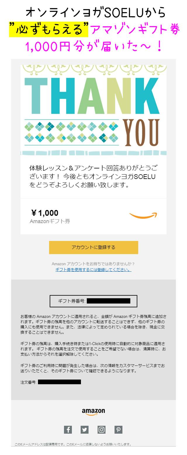 SOELUのamazonギフト券1,000円分はこんな形で届く!